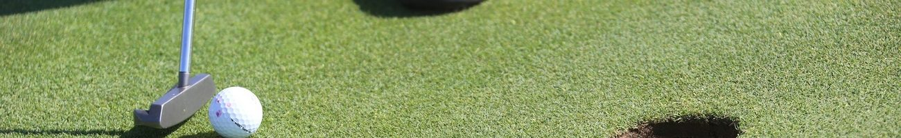 Association Villennes Bienvenue - Section Golf